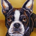 Watercolour portrait of a French Bulldog.