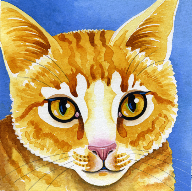 Watercolour portrait of a ginger cat.
